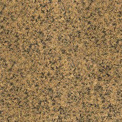 Goldish Granite