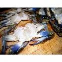 Sea Crab Cleaned Whole, 1 - 2 Kg, Packaging Type: Packet