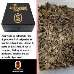 Agarwood Mori.SP-040
