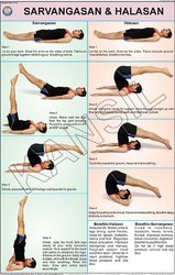 Sarvangasan & Halasan For Yoga Chart