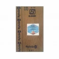 Brown Sylvan BWP Grade Plywood, Size: 8x4 Feet, Thickness: 19mm