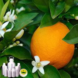 Orange Blossom Absolute Oil