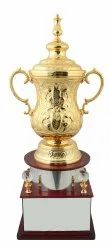 Exquisite Brass Cup Trophy