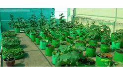 Organic Farming Consultancy