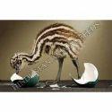 EMU Layer Feed