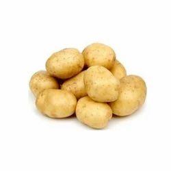 Organic Potato, Packaging: Plastic Bag or Polythen