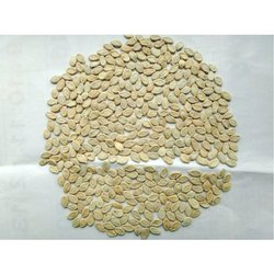 Balaji Seeds Ash Gourd Seed, Packaging Size: 100 Gram,150 Gram, Packaging Type: Packet