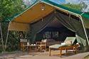 Exotic African Safari Tent