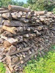 Seasoning Firewood