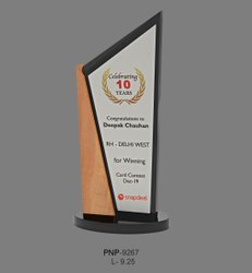 Acrylic Trophy Award