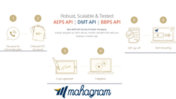 AEPS API Porvider