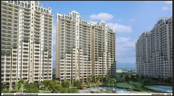 1BHK Apartment Construction Services