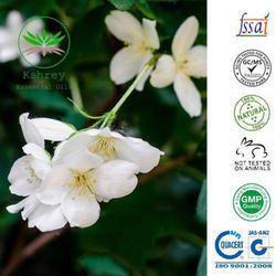 Jasmine Grandiflorum Floral Water