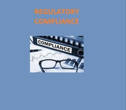 REGULATORY SERVICE