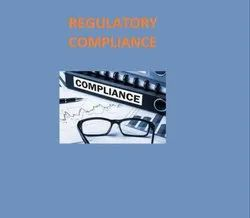 Consulting Firm Manufacturing REGULATORY SERVICE
