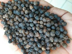 Black Pepper 500-550GL