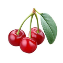Acerola Cherry Extracts