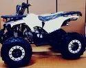 125 Cc ATV Quad Bike