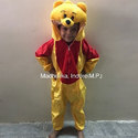 Pooh Cartoon Costumes