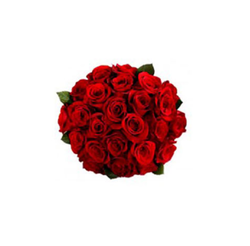 16 Red Roses Bouquet