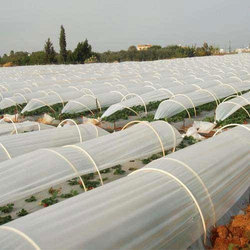 Low Tunnel Film, Packaging Type: Roll, For Agricultural Industry