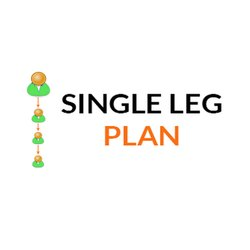 Single Leg MLM Software Service