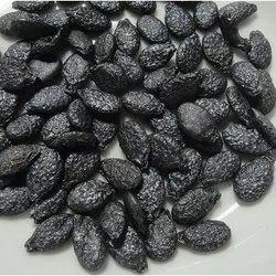 Ridge Gourd Seeds
