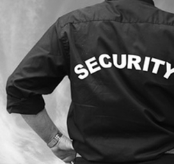 Security Consultancy And Audits Services
