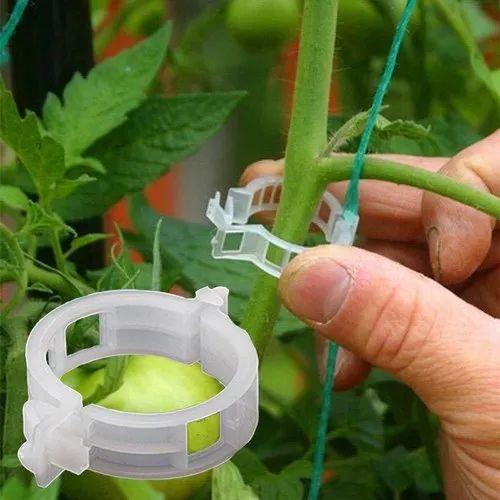 Plastic Tomato Clip