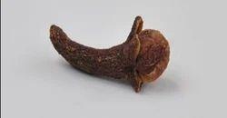 Dry Clove