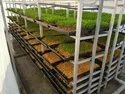Advance Semi Automated Hydroponic Fodder Shadenet Machine