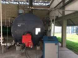 Shell Type Fuel Tube Steam Boilers
