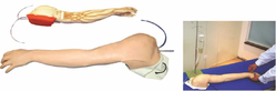 Vein Injection Arm Model