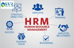 Human Resources Management Software