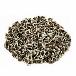 Moringa Pkm-2 Seeds