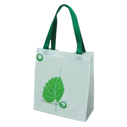 Non Woven Printed Carry Bag, Bag Size: 14 X 16 Inches