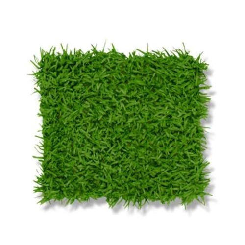 Green Grass Mat