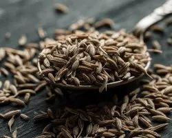 Black Cumin Seeds, Packaging Type: Gunny Bag