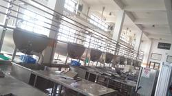 Paneer Processing Plant