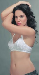 Embroidery Work Kashish Bra, Size: 32B To 38B