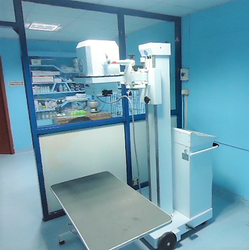 Digital Radiography X Rays Services