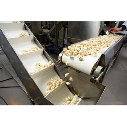 Food Processing Conveyor