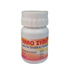 Nano Zyme