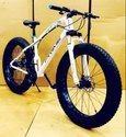 Prime Fat Tyre Bike