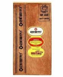 Gurjan CENTURY PLYWOOD, For Furniture, Size: 2440x1220mm