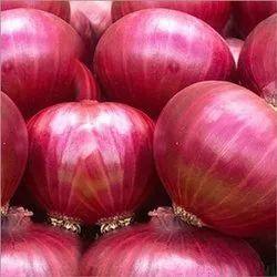 Nasik Onion, PP Mesh Bag, Packaging Size: 25,50 Kg