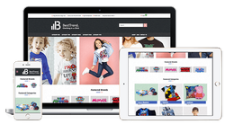 E- Commerce Website Designing Service, In Pan India