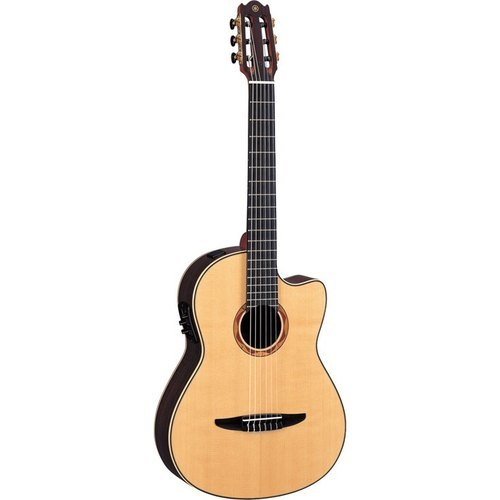String Based Instruments At Rs 11500 Piece String Musical