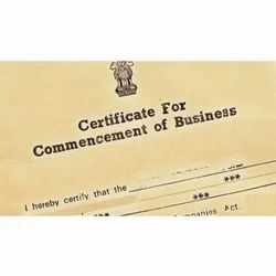 Consulting Firm IT and Consulting Commencement Certificate Compliance Service