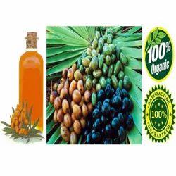 Crude Saw Palmetto Oil
